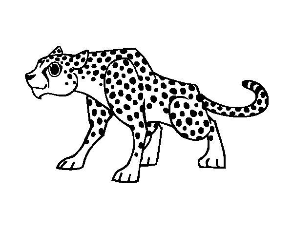 Niño Leyendo Un Libro Colouring Pages Page 2: A Cheetah Coloring Page