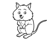 A little hamster coloring page