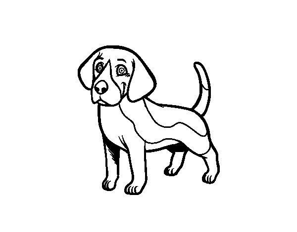 Realistic Dog Coloring Pages Beagles Coloring Pages Beagle Puppy Coloring Pages