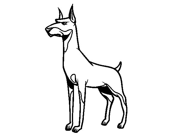 Doberman dog coloring page for Doberman coloring pages