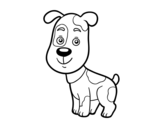 Domestic dog coloring page