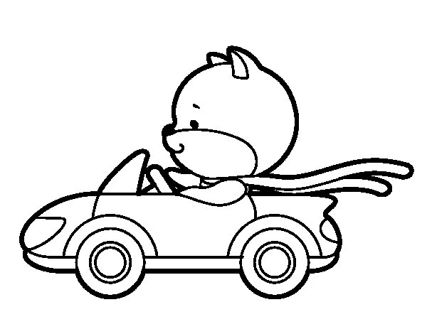 Driving coloring pages ~ Driving cat coloring page - Coloringcrew.com