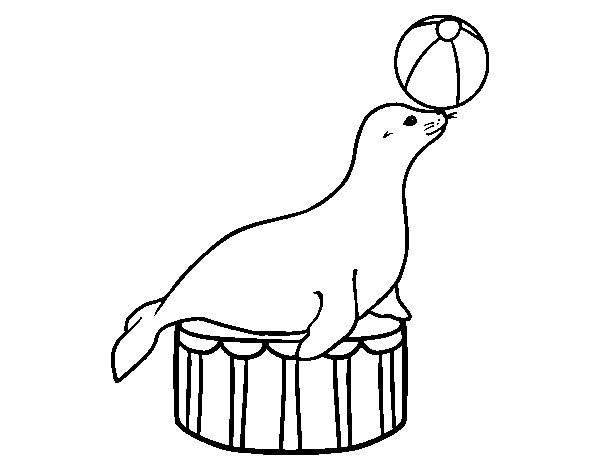 Equilibrist seal coloring page for Circus seal coloring page