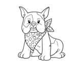Dibujo de French Bulldog