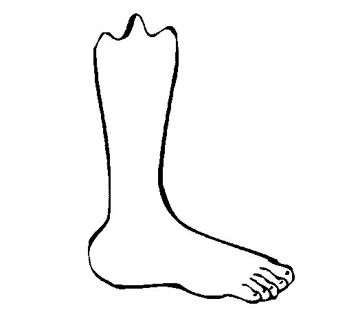 free coloring pages of leg broken
