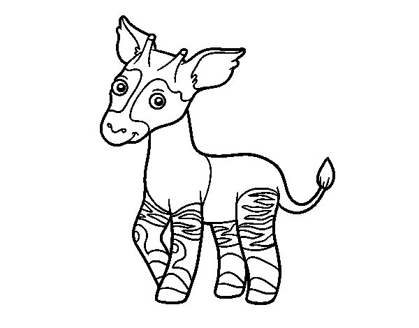 Okapi coloring page