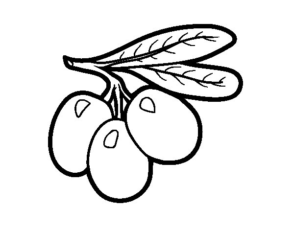 ... Free Printable Bird Coloring Pages. on olive tree coloring book