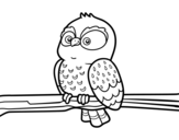 Dibujo de Owl on a branch