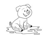Pig in mud coloring page