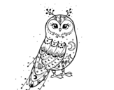 Dibujo de Winter Barn owl
