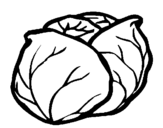 Coloring page cabbage painted byabc