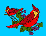 Coloring page Birds painted byShebear