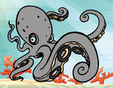 Coloring page Angry Octopus painted byGemma
