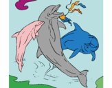 Coloring page Dolphins playing painted bySheridan