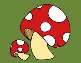 Coloring page Red pine mushroom painted bybarbie_kil