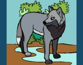 Coloring page Wolf painted byKroll1122