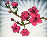 Coloring page Cherry-tree branch painted byDKAcrazy