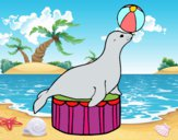 Coloring page Equilibrist seal painted bySavannah_M