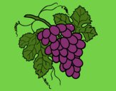Coloring page Bunch of grapes painted byTheColor