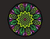 Mandala of nature