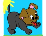 Coloring page Puppy painted byamilia
