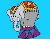 Coloring page Performing elephant painted bymindella