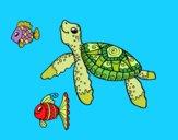 Sea turtle with fish
