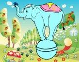 Equilibrist elephant