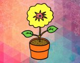 Coloring page A spring flower painted byALAN