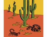 Coloring page Desert painted bygobishop