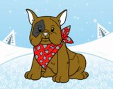 Coloring page French Bulldog painted byDANO