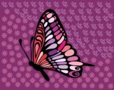 Coloring page Left butterfly painted bypilgrimzky