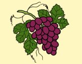 Coloring page Bunch of grapes painted byAnia