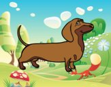 Coloring page Dachshund dog painted byAnia