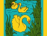 Coloring page Swans painted byCherokeeGl