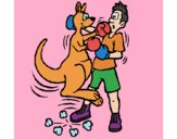 Boxer kangaroo