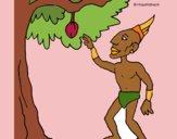 Mayan in fruit tree