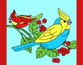 Coloring page Birds painted byAnia