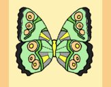Coloring page Butterfly 1a painted byAnia