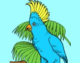 Coloring page Cockatoo painted byAnia