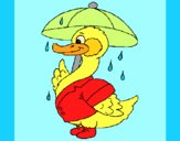 Coloring page Duck in the rain painted byAnia