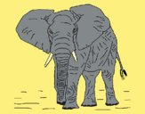 Coloring page Elephant 1 painted byAnia