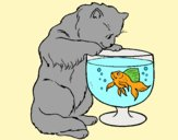 Coloring page Cat watching fish painted byAnia