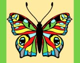Coloring page Butterfly 20 painted byAnia