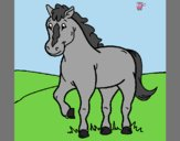 Coloring page Horse 4 painted byAnia
