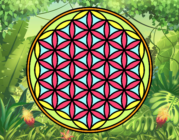 Coloring page Mandala lifebloom painted bySant