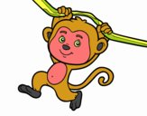 Monkey hanging from a branch