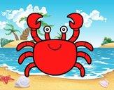 A sea crab