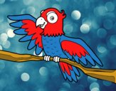 Coloring page Parrot in freedom painted bysamg