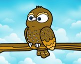 Coloring page Owl on a branch painted bysamg